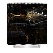 Forest Pond Shower Curtain
