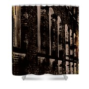 Forlorn Abstraction Shower Curtain