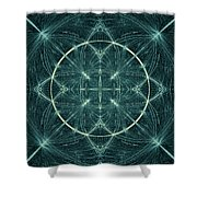Fractal Fireworks  Shower Curtain