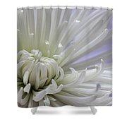 Fragile Beauty Shower Curtain
