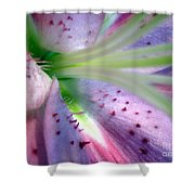 Fragments Series Shower Curtain
