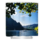 French Polynesia, Moorea Shower Curtain