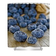 Fresh Blueberries Shower Curtain