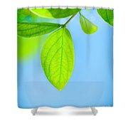 Fresh Green Leaves Shower Curtain
