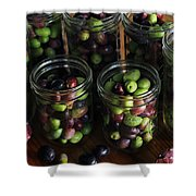 Fresh Harvested Olives And Tunas Shower Curtain