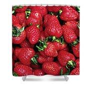 Fresh Strawberries Shower Curtain