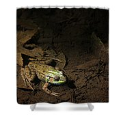 Frog 4 Shower Curtain