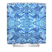 Frost Feathers Shower Curtain