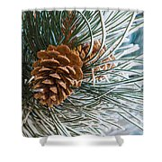 Frosty Pine Needles And Pine Cones Shower Curtain