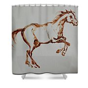 Galloping Horse Shower Curtain