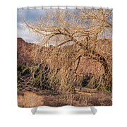Garden Of The Gods Entrance Shower Curtain