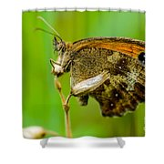 Gatekeeper Shower Curtain