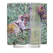 Gilded Flicker 4167 Shower Curtain