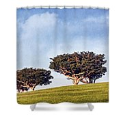 Glorious Morning Pnt Shower Curtain