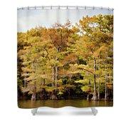 Golden Bayou Shower Curtain