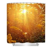 Golden Days Of Autumn Shower Curtain