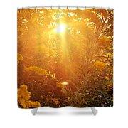 Golden Days Of Autumn Shower Curtain