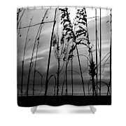 Gone Tonite Shower Curtain
