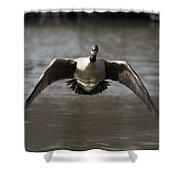 Goose In Flight Shower Curtain