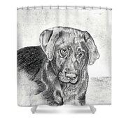 Gozar Shower Curtain