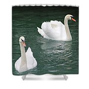 Grace And Charm Shower Curtain