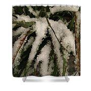 Grass In Snow 2 Shower Curtain
