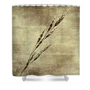 Grass Seeds Shower Curtain