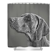 Gray Ghost Shower Curtain