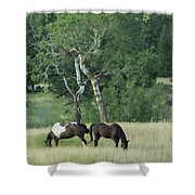 Grazing Shower Curtain