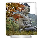 Great Buddha In Autumn Shower Curtain