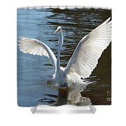 Great Egret Wings Shower Curtain
