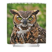 Great Horn Owl Nature Educator Shower Curtain