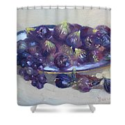 Greek Figs Shower Curtain