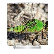 Green Dragonfly Closeup Shower Curtain