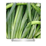 Green Onion Market Bergen Shower Curtain