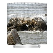 Grey Water At Window Rock Shower Curtain