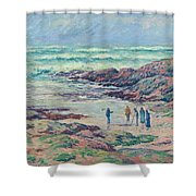 Grey Weather Shower Curtain