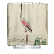 Grote Flamingo Shower Curtain