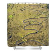 Haleakala Highway Shower Curtain