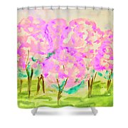 Hand Painted Picture, Spring Garden Shower Curtain