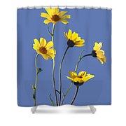 Happy Daisies II Shower Curtain
