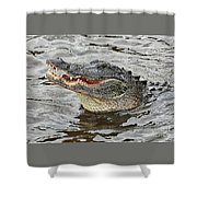 Happy Florida Gator Shower Curtain