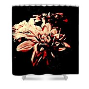 Harbinger Of Spring Shower Curtain