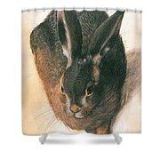 Hare 1528  Shower Curtain