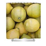 Harvested Lemons Shower Curtain
