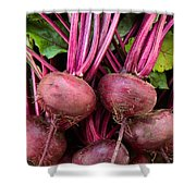 Harvested Organic Beets Shower Curtain