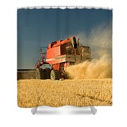 Harvesting Wheat Shower Curtain