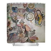 Hats And Stuff Album Shower Curtain
