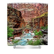 Havasu Shower Curtain