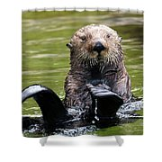 Heads Or Tails Shower Curtain